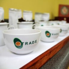 QTrade Teas & Herbs Product Photography